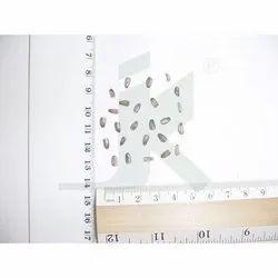Milk Thistle Herb, Packaging Type: PP Bag, Packaging Size: 25 Kg