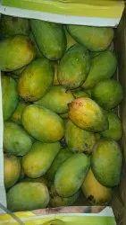 A Grade Fresh Mango, Packaging Type: Carton, Packaging Size: 10 Kg