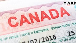 Tourist Visit Canada Visa, Latest+old Passports, 6 Months