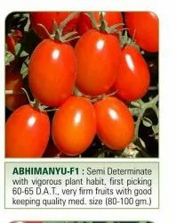 Tomato Doctor Seeds For Reselling And Agriculture