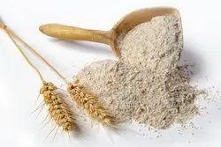 Wheat Flour for Human Consumption
