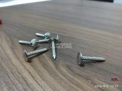 25mm Mild Steel Screws Nickel