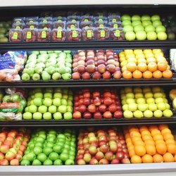 Cold Storage for Fruits Vegetables And Pulses Project Report Consultancy