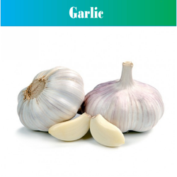 A Grade Fresh Garlic, Packaging Size: 25 Kg And 50 Kg