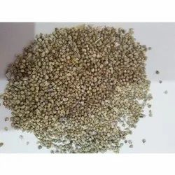 Kambu Pearl Millet, For Animal Feed, Packaging Size: 50 Kg
