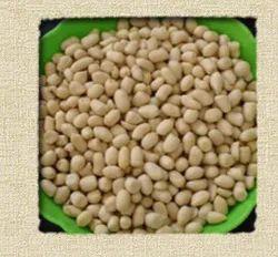 Blanched Peanut Kernel