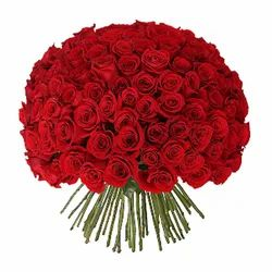 Fresh Cut Flowers Red Rose Bouquet