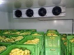 Blue Star Banana Ripening Chamber