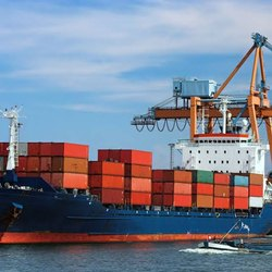 20 Sea Freight Service, 1000