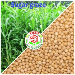 Nutrifeed Seeds