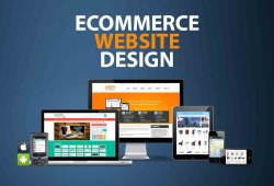 E Commerce Website Design, Free Support: 1 Month