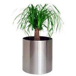 Stainless Steel Metal Round Cylindrical  Planters