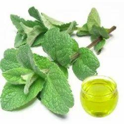 Peppermint Hydrosol